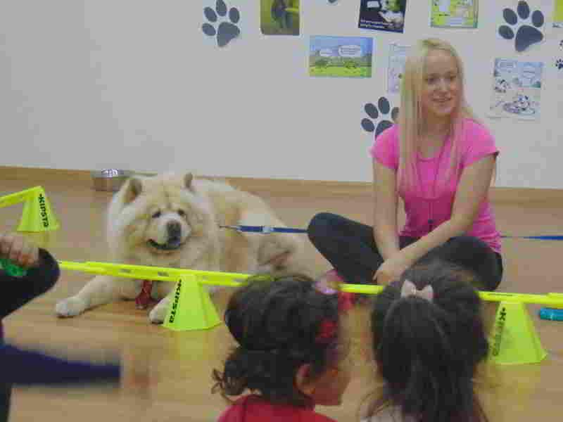 04 Ekim Hayvanları Koruma Günü İçin Bambam Okulumuza Geldi