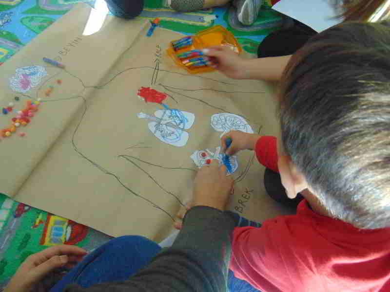 Görsel Sanatlar dersimizde iç organlarımızı öğrenip boyuyoruz