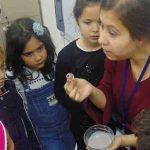 Fen bilgisi dersinde manyetik kuvvet konusunu işledik, dersi manyetik hamur yaparak tamamladık.